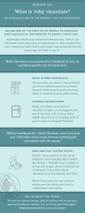 Ruby chocolate infographic